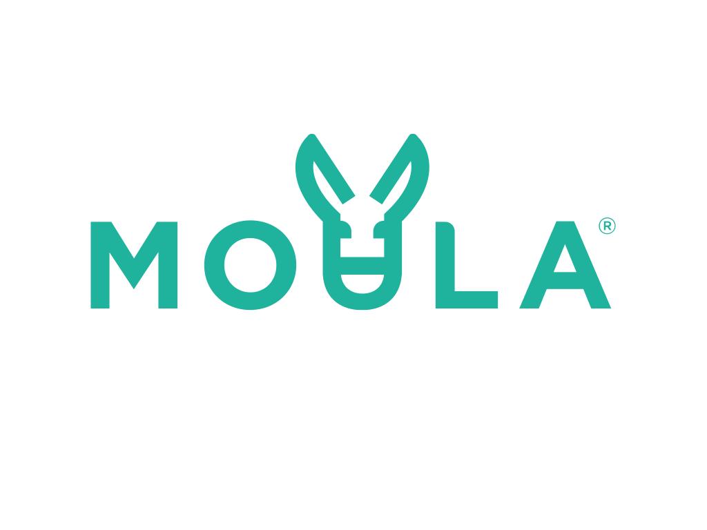Moula logo teal